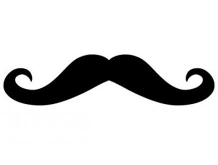 Šta brada i brkovi govore o vama?