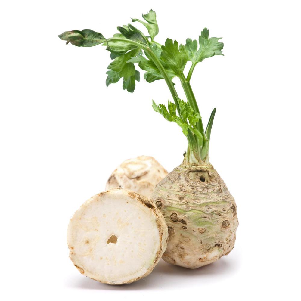 Celer koren