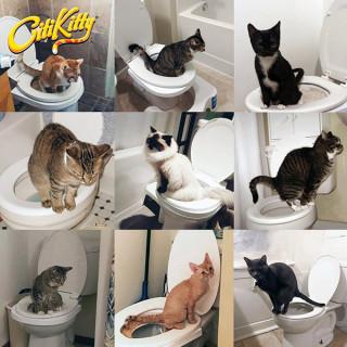 CitiKitty Cat Toilet Training - Pomoćnik mačkama da nauče da koriste WC šolje