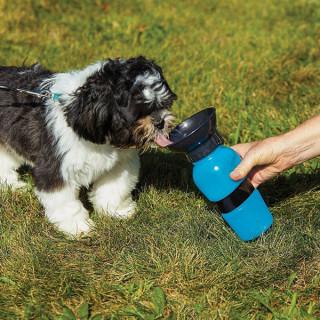 Aqua Dog - Specijalna čaša za pse