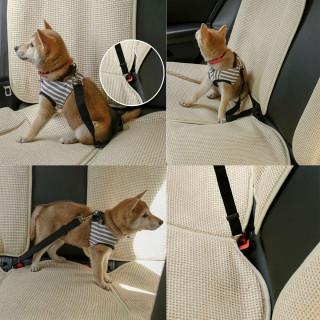 Click and go - Sigurnostni auto-pojas za pse i mačke