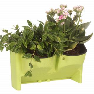 Plant wall - Dupla zidna saksija za cveće