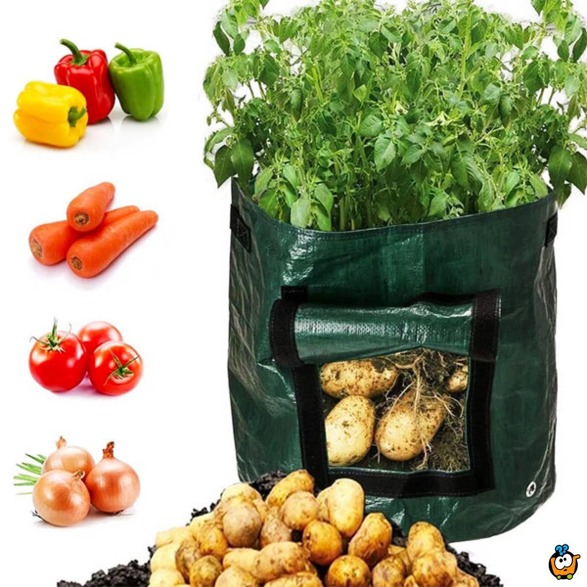 Home Garden - Vrećasta saksija za kućno uzgajanje povrća
