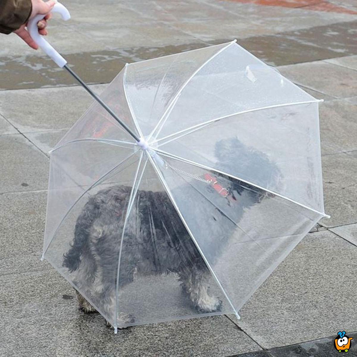 Pet umbrella – Kišobran za kućne ljubimce sa ugrađenim povodcem